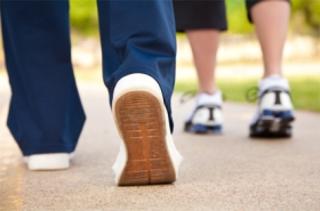 Kids Walking - School Board Icon